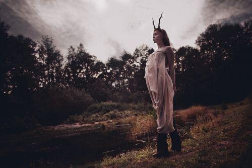 Deer, Beauty and Mysticism