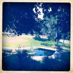 Greystone Park & Mansion, Garden View