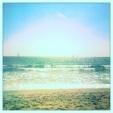 Venice Beach On A Clear Day